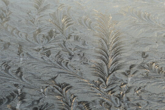 Frosty. Ice flowers on a window at winter time. The entire window is decorated with the temporary work of art.