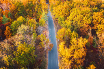 Aerial view of road in beautiful autumn forest at sunset. Colorful landscape with empty road , trees with multicolored leaves in fall. Roadway in park in Europe. Top view from drone. Autumn colors