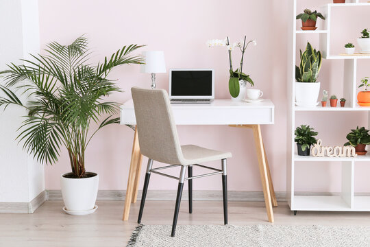 Stylish interior of room with green houseplants and workplace