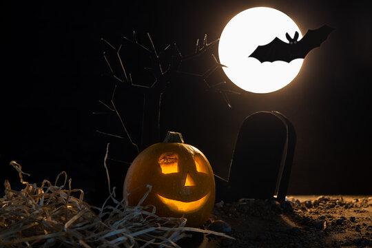 halloween pumpkin with bats and moon