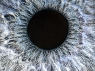 human blue and grey eye extreme macro