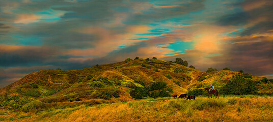 Panoramic view of California's ranchlands, a portrait of the old west 20th century landscape.