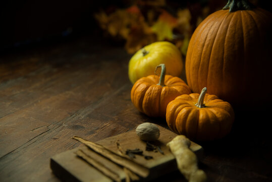 Calabazas halloween octubre otoño samhain ofrenda ciclos colores calidos bodegón cosecha