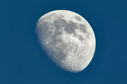 The Moon detailed shot in blue daylight sky, taken at 1600mm focal length, waxing gibbous phase, blue hour
