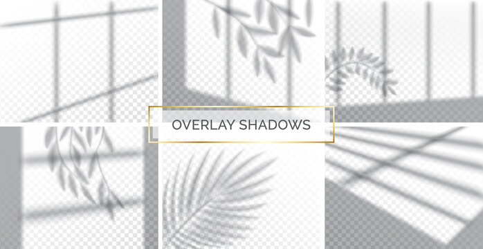 Set of shadows, overlay effects mock up, window frame with curtains and leaf of plants, natural interior light, vector illustration