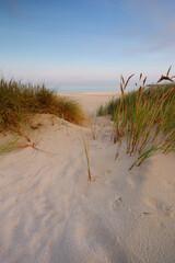 Wydmy na wybrzeżu Morza Bałtyckiego,plaża zachodnia,Kołobrzeg,Polska.