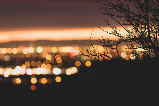 Foreground silhouette of desert brush and branches, with blurred soft focus nighttime view of Boise, Idaho in the distance.