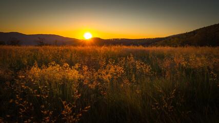 Wschód słońca widziany z namiotu