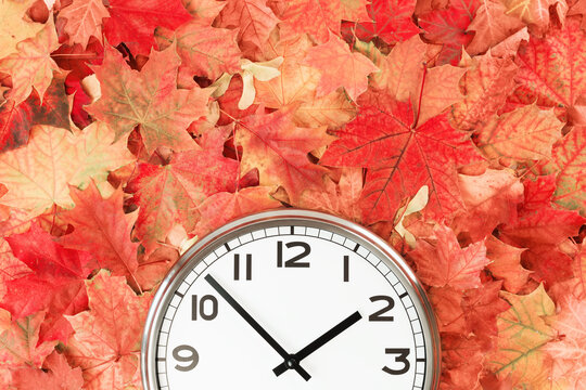 Plain wall clock in the center of autumn orange red leaves and fall foliage. Two o'clock. copy space, time management or back to school. lunch time. Opening or closing hours. daylight saving time