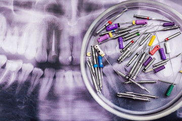 Wall Mural - Dental instruments with jaw shot. Dentistry concept