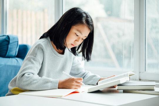 Teenager girl doing homework at home
