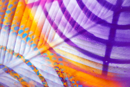 Painted colorful palm/floral pattern/background/texture