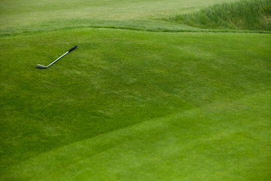 Golf club on the grass