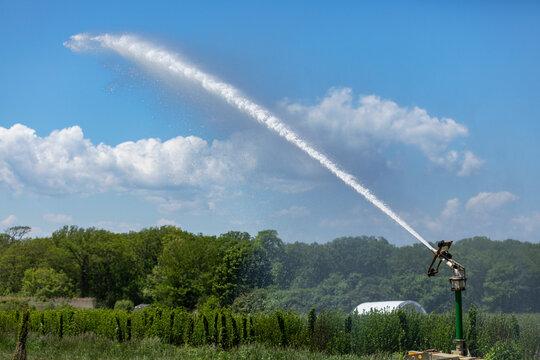 Industrial Sprinkler in Use at Farm