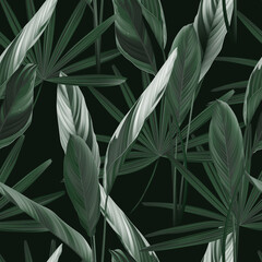Foliage seamless pattern, heliconia Ctenanthe oppenheimiana plant and Rhapis excelsa in green on dark green