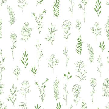 Green herbs and flowers seamless pattern. Scandinavian hand drawn design. Vector illustration.