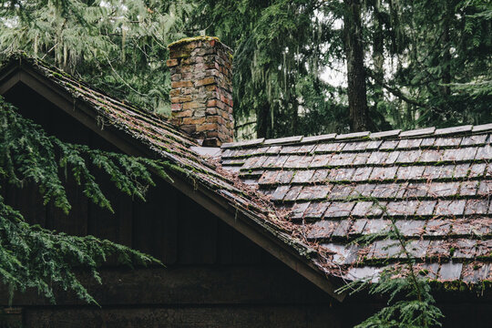 Cedar Shakes on Roof of Old Cabin