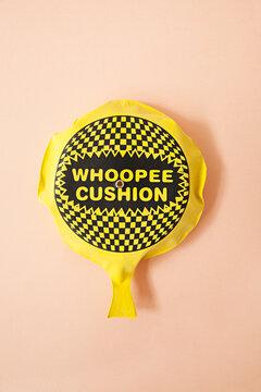 Woopee cushion - pink