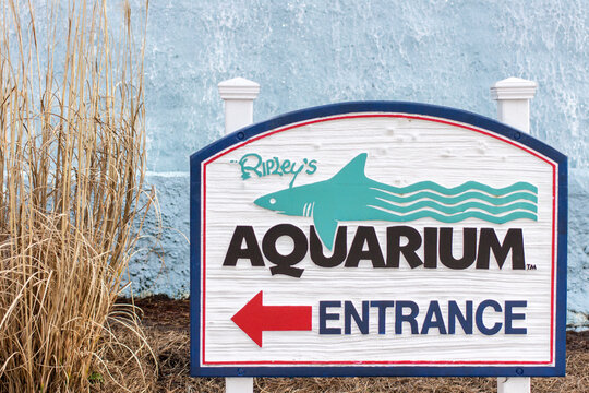 Myrtle Beach, South Carolina, USA - Sign for the Ripleys Aquarium. Ripleys operates museums and aquariums in popular tourist areas in the USA.