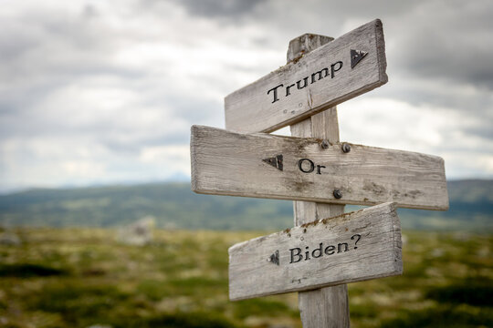 trump or biden text on wooden signpost outdoors