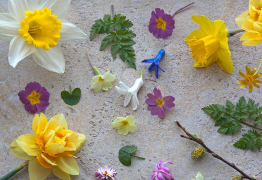 Colourful spring flowers laid out on a natural stone background