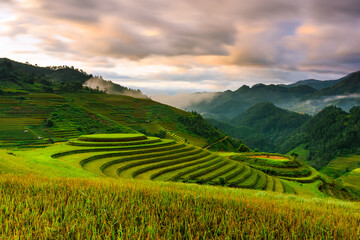 Sunrise on famous terraced rice paddy in Mu Cang Chai district, Lao Cai province, Vietnam.