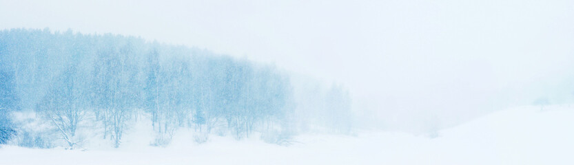 Snowy landscape panoramic cloudy view. Winter forest and ravine, snowfall, blue tones