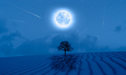 Wall Mural - Lone Dead Tree with Lunar eclipse, sand dune and tree's shadow in the foreground