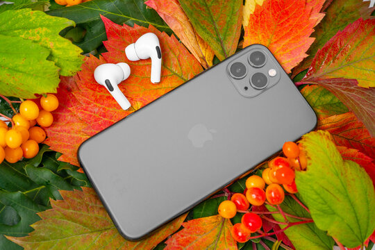 ROSTOV, RUSSIA - August 26, 2020: new Apple iPhone 11 or 12 Pro Wireless headphones AirPods Pro lie on colorful foliage. Autumn presentation or event Apple. The latest model of mobile phones