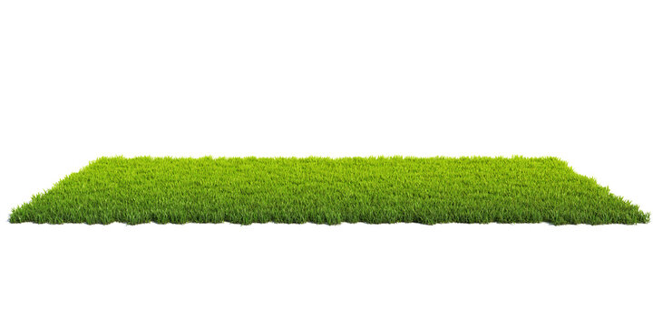 Small surface covered with grass, grass podium, lawn background 3d rendering