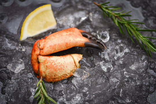 Seafood frozen boiled crab claws Fresh crab with ingredients lemon rosemary on ice at market