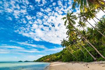 horizontal photo, beach on Koh Samui in Thailand, paradise, sunny beach, coconuts and palm trees, sunbathing and swimming in the sea, blue ocean and sky, travel to the resort, relaxation and enjoyment Wall mural