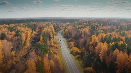 Wall Mural - Highway road in beautiful yellow orange autumn forest fall landscape. Aerial view, 4K UHD.