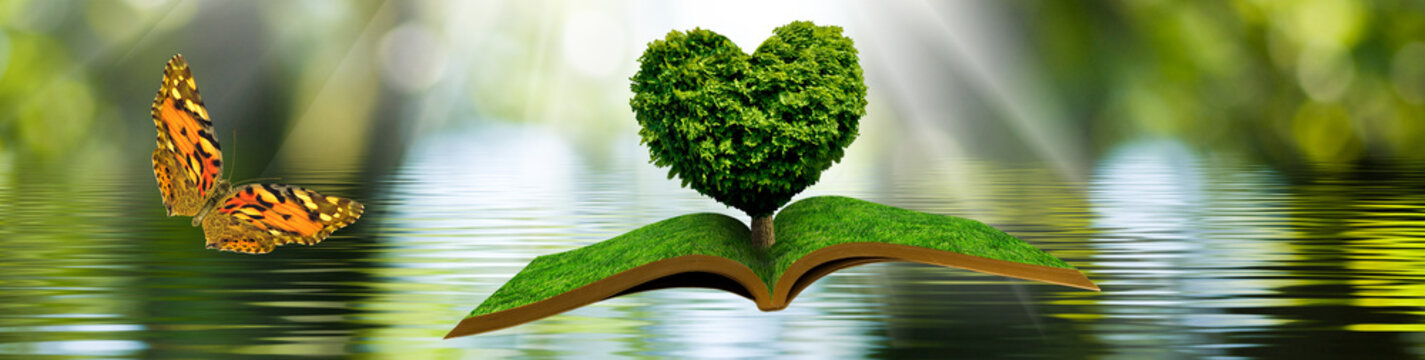 flying open book and a butterfly. Tree in the form of a stylized heart on a book on a background of a water surface