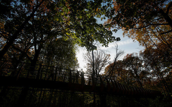 People walk on a pedestrian bridge in the woods during sunny autumn weather in Moscow