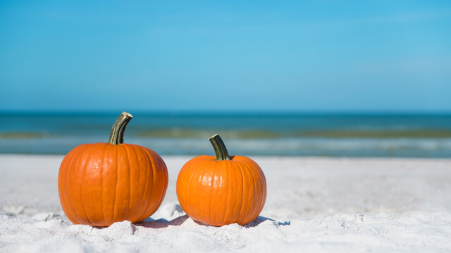 Autumn season composition. Pumpkin on the beach. Two pumpkins on sand beach shore. On background ocean water. Autumn in Florida. Fall season. Tropical nature.