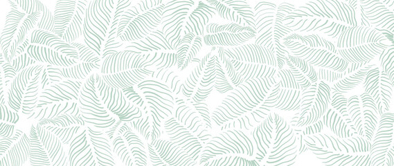 Fototapeta Abstract leave background pattern vector. Tropical monstera leaf design wallpaper. Botanical texture design for print, wall arts, and wallpaper. obraz