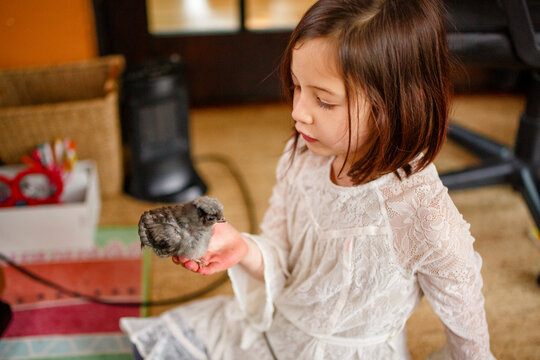 A small child sits on the floor gazing at a baby chick in her palm