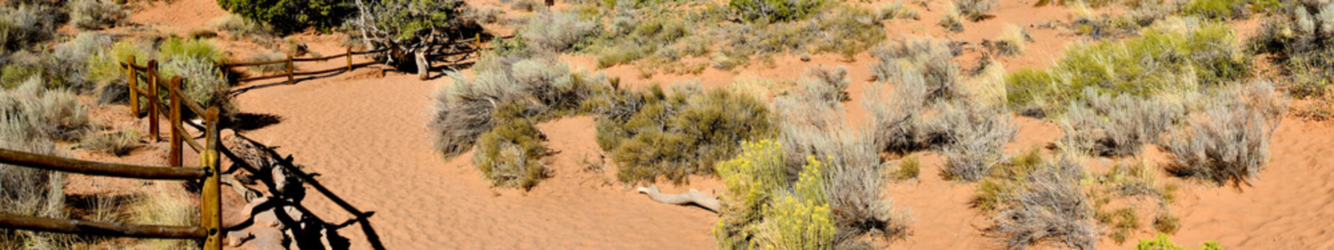 Hiking Trail in Arches National Park