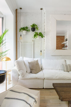 Tall crop of a stylish bright living room with hanging plant and couch