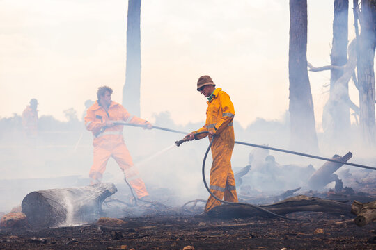firefighters using hoses to spray water on burnt logs after fire