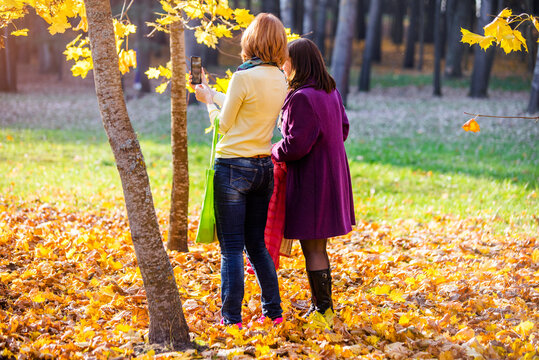Two girls take pictures of nature in the autumn Park