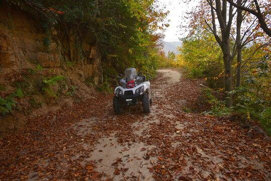 Road, outumn and ATV  motors