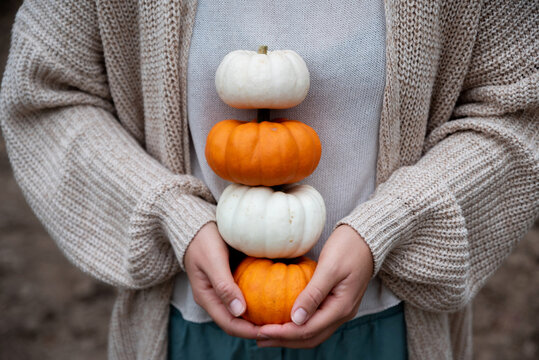 Woman holding pumpkins with her hands at the field.