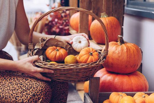 Woman holding a basket full of pumpkins .