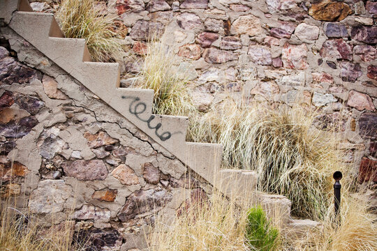 Stairway with weeds and graffiti