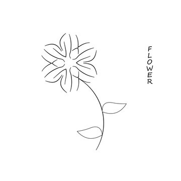 Branches with magnolia flowers on a white background. Floral vector background with space for text.