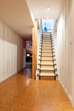 Basement and stairs in house