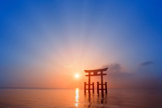 白鬚神社の鳥居と朝日