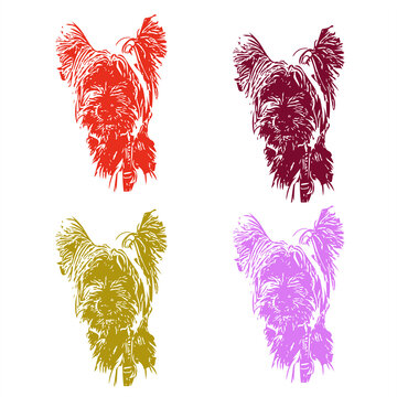 Dog, terrier, west-highland-white-terrier, white, black, vector, graphics, drawing, picture, stylization, image, isolated, illustration. All lines in the drawing can be edited. The background is blank